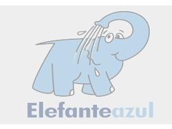 Elefante Azul Valdepeñas -  Higienización y Desodorización - Centro de lavado de coches Elefante Azul Valdepeñas